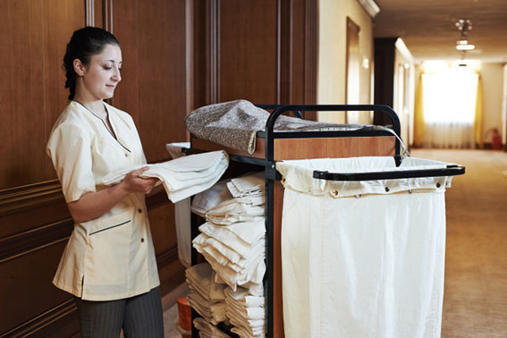 Housekeeping Arayan - Fulya