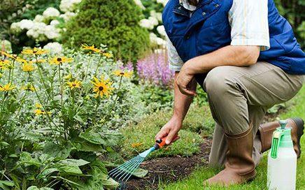 Üsküdar'da Bahçede Çalışacak Vasıfsız Eleman